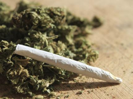 In auto 7 etti di marijuana, arrestato un 25enne