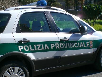 Auto della polizia provinciale