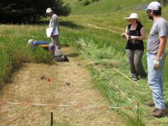 """Il gruppo di UNICAM, membro italiano del network, ha svolto le attività di ricerca presso la Riserva Naturale Statale """"Montagna di Torricchio"""", un vero e proprio """"laboratorio di ricerca all'aperto"""""""