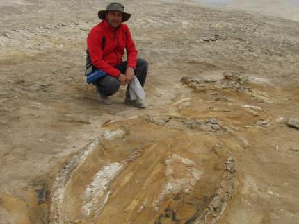 Claudio Di Celma e il fossile rinvenuto