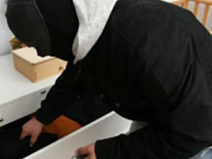 ladri in abitazione, topi d'appartamento, furti,