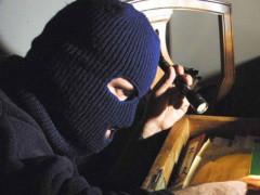ladri, furti