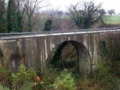 Ponte sul torrente Pavanella a Grottaccia