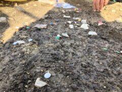 Reperti archeologici rinvenuti a Tolentino